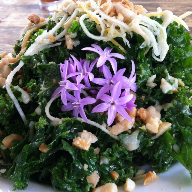 MIGHTY GREEN SALAD: Freshly Harvested Kale, Shredded Green Papaya, Crushed Macadamia Nuts, and Herb Vinaigrette Dressing.The Garden Cafe at Common Ground, Kauai (this amazing salad was introduced to me by Kasey Buick of Kasey Buick/One Girl Talks http://kaseybuick.com/